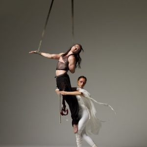 Ballett-Duo-Geige-03a