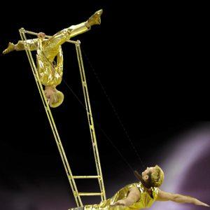 High Power Ladder Show-02