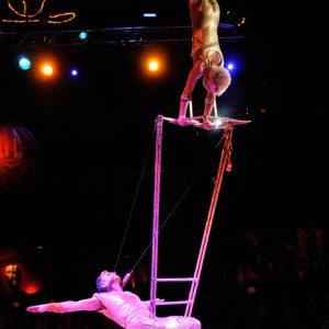 High Power Ladder Show-03
