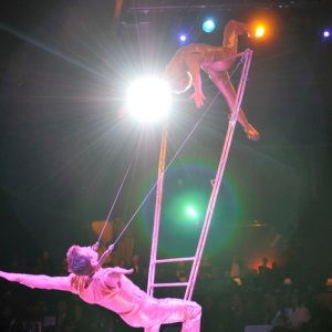 High Power Ladder Show-04