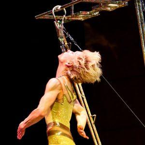 High Power Ladder Show-11
