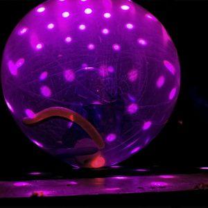 ballon-kuenstler-leinup-muenchen-13